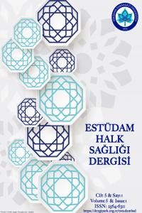 ESTUDAM Public Health Journal