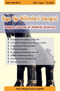 Aegean Journal of Medical Sciences